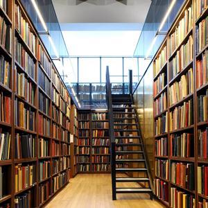 Библиотеки Старой Купавны